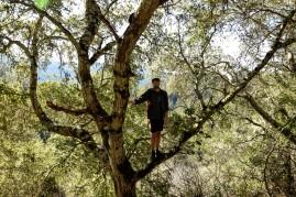 Adam, Portola Redwoods, La Honda, California